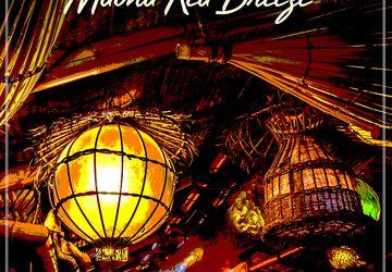 Exotica Gem by Hawaiian Spotlighters Reissue on Bacchus!