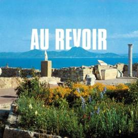 Les Agamemnonz - Au Revoir