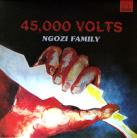 Ngozi Family - 45,000 Volts CD
