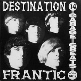VA - Destination Frantic: 14 Garage Greats of the '60s LP