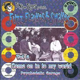 V/A - TONY THE TYGER PRESENTS FUZZ, FLAYKES, & SHAKES VOLUME SIX: COME ON IN TO MY WORLD LP
