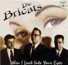 THE BRICATS - When I Look Into Your Eyes EP