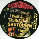 Electric Frankenstein - I Was a Teenage Shutdown LP Pic Disc