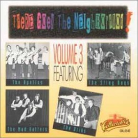 V/A - There Goes The Neighborhood, Volume Three CD
