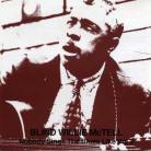 Blind Willie McTell - Nobody Sings The Blues LIke Vol. 2 CD