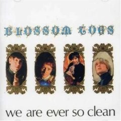 BLOSSOM TOES - We Are Ever So Clean CD