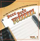 V/A - Buzz Buzz Buzzzzzz - The High Art Of The Groovy '60s Psychedelic Instrumental CD