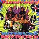 THE FLESHTONES - Hitsburg Revisited CD
