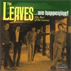 The Leaves - ...are Happening! The Best Of The Leaves CD