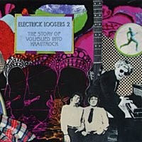 V/A - Electrick Loosers Volume Two CD
